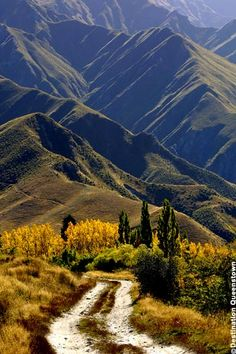 Autumn in Queenstown Great Places, Places To Go, Bay Of Islands, Fjord, Land Of The Free, Top Travel Destinations, New Zealand Travel, Heaven On Earth, Scenery