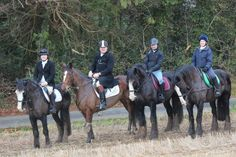 From L-R Martin riding Jazz, James riding Twix, Vladdy riding Eastwood and Roisin riding Midnight.