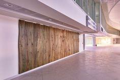 Una #parete allestita con listoni di #ulivo massello, l' #albero pugliese simbolo delle #tradizioni della nostra #terra, trasformati dal nostro #ingegno e #maestria. #falegnamo
