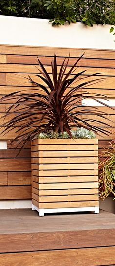 Our Finn Planter's striking slatted teak construction creates a planter with presence. Modern Outdoor Living, Square Planters, Sustainable Farming, Planter Boxes, Teak, Outdoor Structures, Outdoor Furniture, Create, Construction