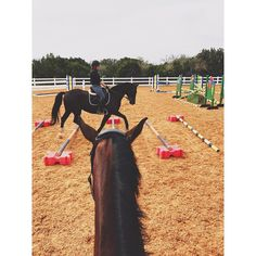 Rocco and Whinny were good for our lesson and we are ready to head out tomorrow morning!!! -Anya&Carly