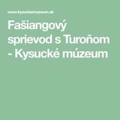 Fašiangový sprievod s Turoňom - Kysucké múzeum