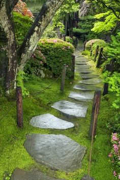 Beautiful pathway, hubbies plans to walk from front to back yard along side of the house.