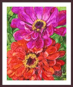 Two Zinnias Framed Print By Vicki Baun Barry - alcohol ink painting on Yupo