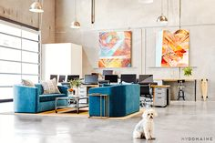 Office space with grey walls and floors, brown rug, silver light fixtures, colorful artwork, blue couches, wood desks, silver coffee table, and patterned pillows