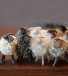 Each little sheep is made from wool from its breed. Cute.