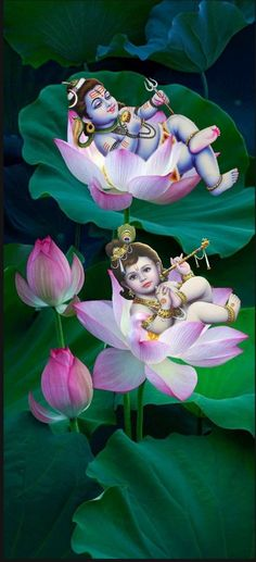 Lord Shiva and Lord Krishna Bal swaroop Bal Krishna, Cute Krishna, Radha Krishna Photo, Radhe Krishna, Lord Krishna, Krishna Pictures, Krishna Photos, Krishna Images, Photos Of Lord Shiva