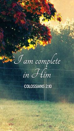 I am complete in Jesus Christ - Colossians Bible Verses Quotes, Bible Scriptures, Jesus Quotes, Short Bible Quotes, Healing Scriptures, Colossians 2, Psalms, Saint Esprit, Spiritual Inspiration