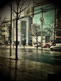 snowy day (Seoul, Korea)