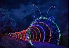 Green Bay Botanical Garden Of Lights