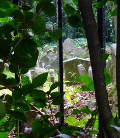 Hyde Park Pet Cemetery, wonderful article with many pictures