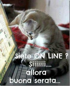 Italian Memes, Good Morning Good Night, Sweet Dreams, Color Splash, Animals And Pets, Sign, Facebook, Google, Genere