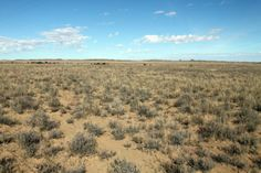 The arid Karoo landscape near Hanover in the Northern Cape, South Africa