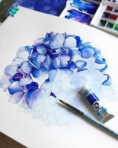 Watercolor Drawing, Watercolor Flowers, Painting & Drawing, Drawing Flowers, Art Floral, Watercolor Techniques, Botanical Art, Flower Art, Art Flowers