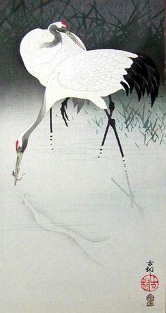 ♞ Artful Animals ♞ bird, dog, cat, fish, bunny and animal paintings - OHARA Koson (1877~1945), Japan