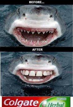Divertida y con un mensaje obvio, Colgate transmite la sensación de que restaura cualquier tipo de dentadura.