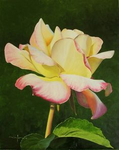 Free Painting Lesson - How to Paint a Realistic Flower in Oil — Online Art Lessons