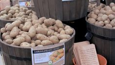 Hillier Garden Centres | How To Grow Your Own Potatoes | Hillier Potato Types, Types Of Potatoes, Grow Potatoes, Arran, Grow Your Own, Stuffed Mushrooms, Vegetables, Recipes, Food