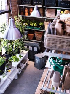 I dream of having enough room in my house to store all my garden stuff inside like this!
