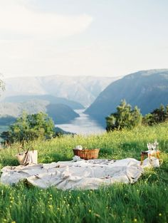 Hillside picnic. Picnic by the fjords or lake. warm spring day, wicker basket, tall grass, wildflowers, wine, cheese,