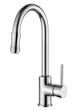 Oceanus Pull-Out Kitchen Faucet in Chrome