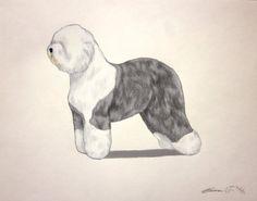 Old English Sheepdog Dog - Archival Quality Art Print - AKC Best in Show Champion - Breed Standard - Herding Group - Original Art Print