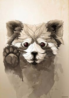 Red Panda - Illustration by Rafapasta
