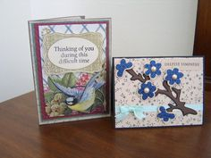 Used Gypsy Wandering by Cricut for the Branch with the blossoms. Frame stamp set by Daily Bread Stamps. Sentiments are Hero Arts stamp sets.