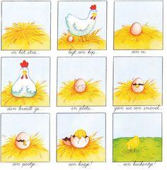 ~ van ei tot kuiken (vanuit het Frans vertaald naar het Nederlands!)