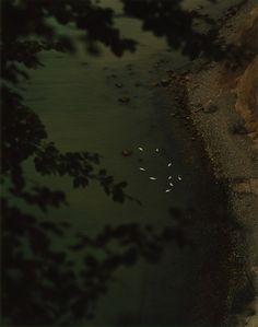 Jasmund #19, 2013 © Arno Schidlowski/Galerie Jo van der Loo.