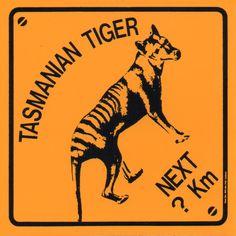 Souvenir sticker from Tasmania showing the now extinct thylacine aka Tasmanian Tiger.