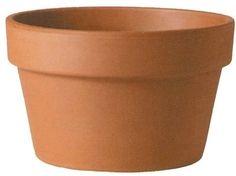 TD100 Italian Azalea: more sizes and slightly cheaper than bulb pots.