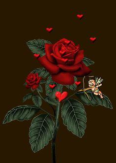 Rosa de amor con corazones animados