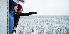 Rokuan kansallispuisto - Luontoon.fi Outdoor, Geology, Outdoors, Outdoor Games, The Great Outdoors