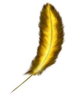 Résultats de recherche d'images pour «dibujos de plumas»