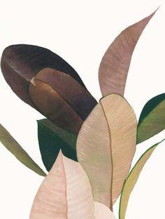 Trendy plants illustration pattern nature - New Ideas Art And Illustration, Pattern Illustration, Art Design, Textures Patterns, Leaf Patterns, Print Patterns, Painting Inspiration, Color Inspiration, Decoration