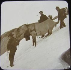 Glass Magic Lantern Slide Decending A Snow Field c1890 Norway L65   eBay.  Wow - this is the type of photo you don't see often!  Wonder who they were?