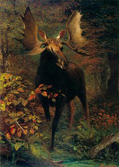 In the Forest (ca. 1880) by Albert Bierstadt (b. January 7, 1830; Solingen near Dusseldorf, Germany – d. February 18, 1902; New York, New York) Oil on canvas, 36 × 26 inches. JKM Collection, National Museum of Wildlife Art of the United States, Jackson, Wyoming