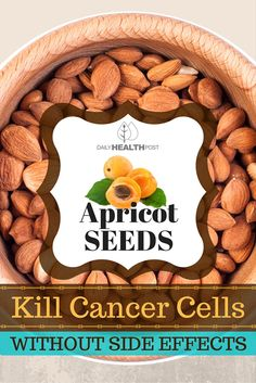 Apricot Seeds Kill Cancer Cells Without Side Effects via @dailyhealthpost   https://drive.google.com/drive/folders/0B3aVpl5G9gQVd2VXTWQyTldXVVE