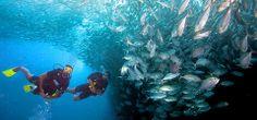 Caribbean vakantie: Dominicaanse Republiek vakantie paradijs duikers en snorkelaars