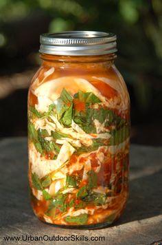 Wild Food Kimchi (Fermented wild edibles such as nettles, curly dock, wild radish, mustard, etc...)