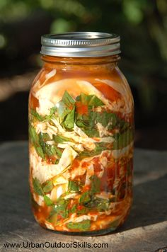 Wild Food Kimchi (Fermented wild edibles such as nettles, curly dock, wild radish, mustard, etc...)