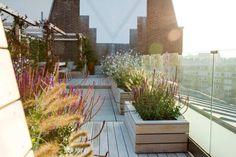 Tolle Ideen für Bepflanzung auf dem Dach
