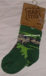 Lost these puppies a few years ago. Best dino socks.