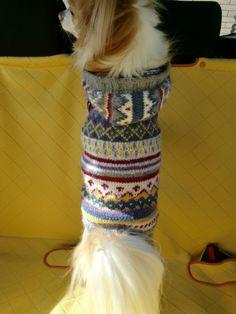 少しずつ余った毛糸を消費しようと編み込み模様にしました