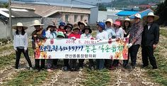 연산동, 서남권하나되기 농촌일손돕기 봉사