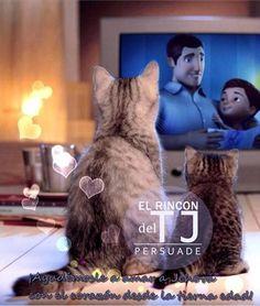 Watching (JW) TV