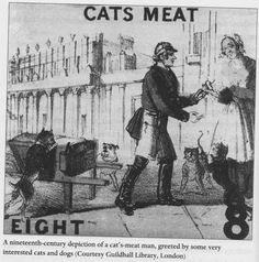 Cats'-meat man