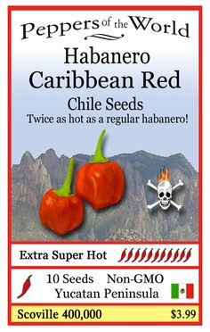 Caribbean Red Habanero -Twice as hot as the regular habanero! Its fruity flavor is a fine addition to make extra spicy salsas, marinades and for some very hot sauces. It originates from the Yucatan Peninsula in Mexico and will grow well in northern climates. Easy to grow. http://www.sandiaseed.com/collections/hot-pepper-seeds/products/caribbean