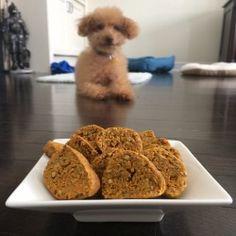 sweet Potato Omega Oat Dog Treats Recipe